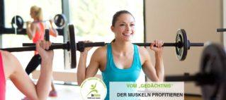 """Beim Krafttraining vom """"Gedächtnis"""" der Muskeln profitieren"""